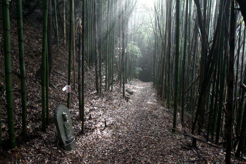 結願へ続く祈りの道~四国遍路で歩きたい香川「讃岐遍路道」5選