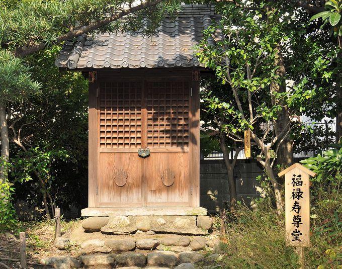 次の七福神は福禄寿と寿老�~− 「寿老人」で無いところがミソ。安置場所の向島百花園、白髭神社を目指そう