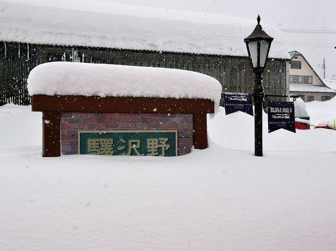 雪を楽しめ! 大雪原を行くディーゼルカーでいざ出発!