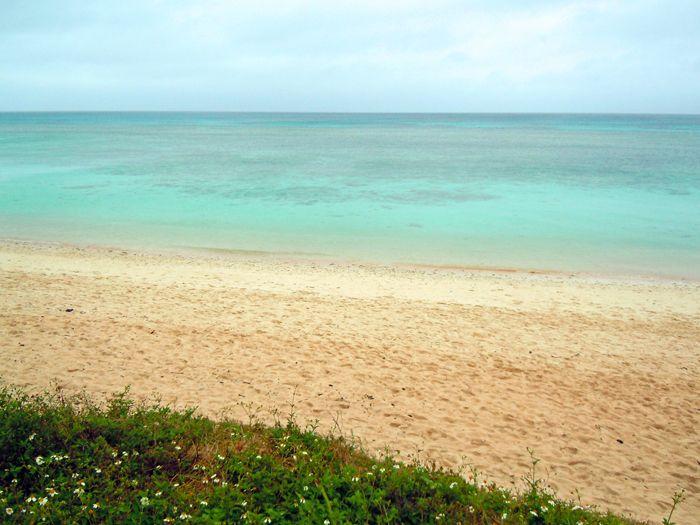 【波照間島】沖縄で一番美しいビーチ、ニシ浜