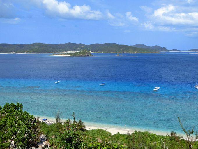 ダイビングを体験したいなら!座間味島