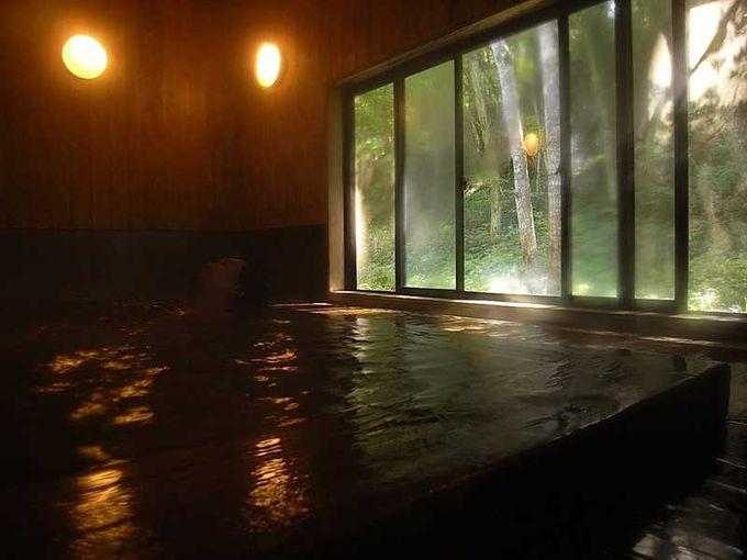 高野槙の内風呂