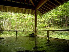 センス良し!お湯良し!景色良し!長野県葛温泉【御宿かじか】