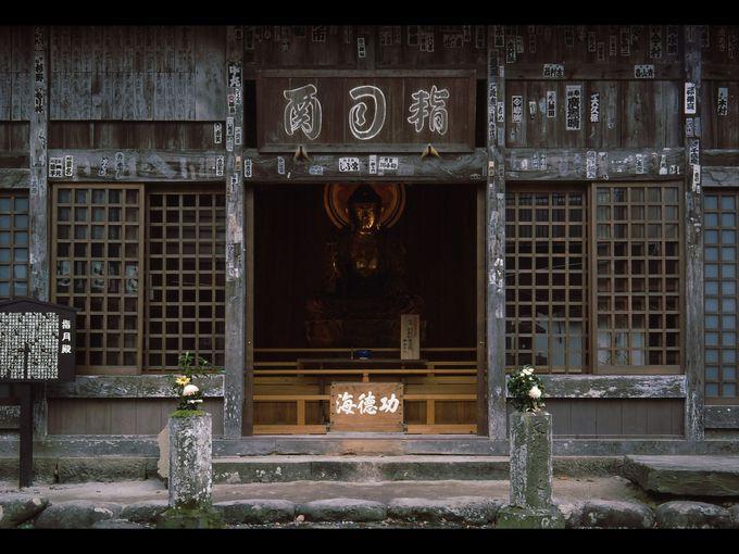 源氏の歴史を感じる 〜指月殿〜