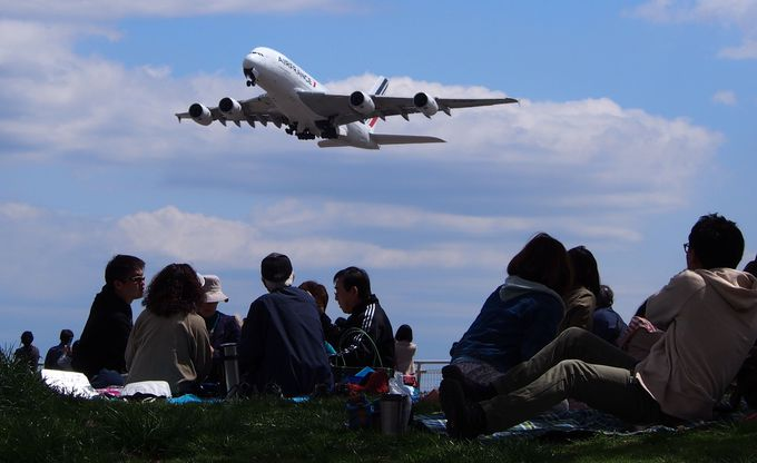 北風が吹く時は「離陸」シーン撮影!大きな機体に興奮