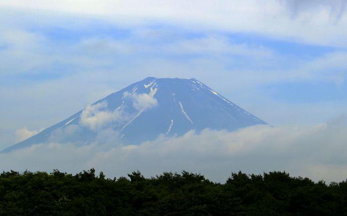富士山クルーズは感動モノ!さらに富士山五合目からは雲海が!
