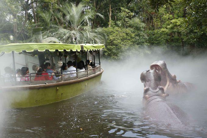 巨大なアナコンダ、霧に包まれたジャングルが現れる