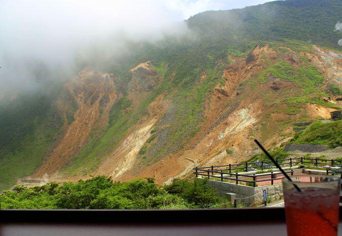 箱根登山鉄道に乗って行こう!沿線おすすめ観光スポット