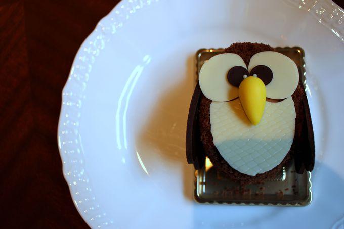 ペンギンケーキ以外のケーキも!?「ふくろうケーキ」