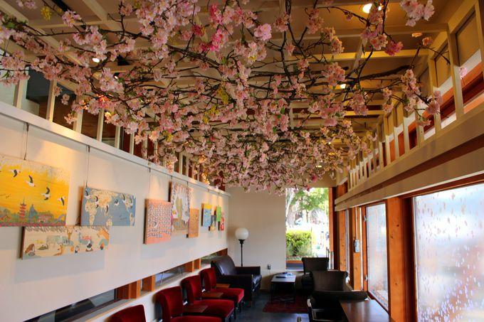 桜を見上げながらコーヒーを楽しんで♪