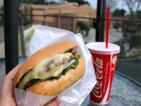 常陸牛バーガーが絶品!茨城・日立「エレファントカフェ」はゾウと太平洋が望めるカフェ|茨城県|トラベルjp<たびねす>