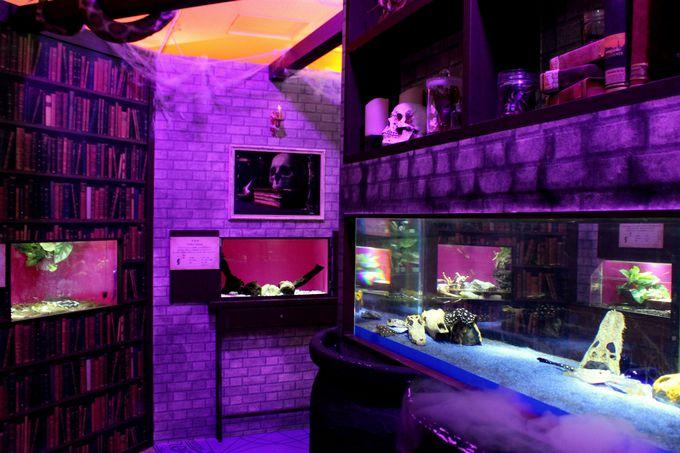 不気味な雰囲気がゾクゾクする「魔女の毒薬調合室」