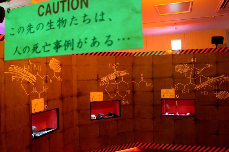 閲覧注意!猛毒生物集合!池袋・サンシャイン水族館「もうどく展2」でゾクゾクしよう