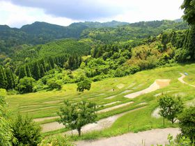 日本のウブドで心をリセット。千葉「大山千枚田」で感動の夏を味わう|千葉県|トラベルjp<たびねす>