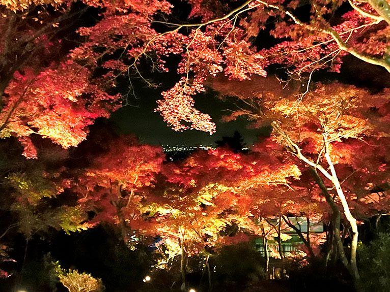 茨城のパワースポット「筑波山」紅葉は夜がお勧め!