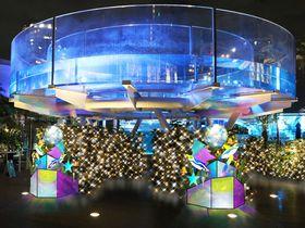 池袋「サンシャイン水族館」クリスマス特別イベント2017の楽しみ方はコレ!