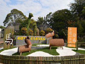 来年の年賀状の撮影場所はココで決まり!日本でここだけの希少動物にも会える横浜・野毛山動物園
