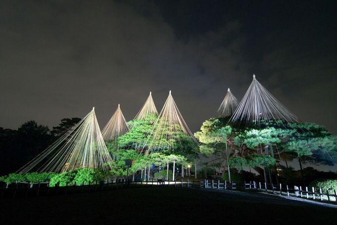 日本三名園「兼六園」で四季折々の景観を楽しむ