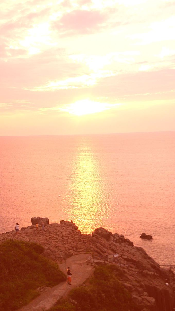 東尋坊の迫力ある断崖と、優しい夕陽の対照美も!