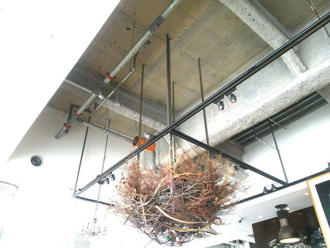 店内にはたくさんのスプーンや巨大な鳥の巣も!?