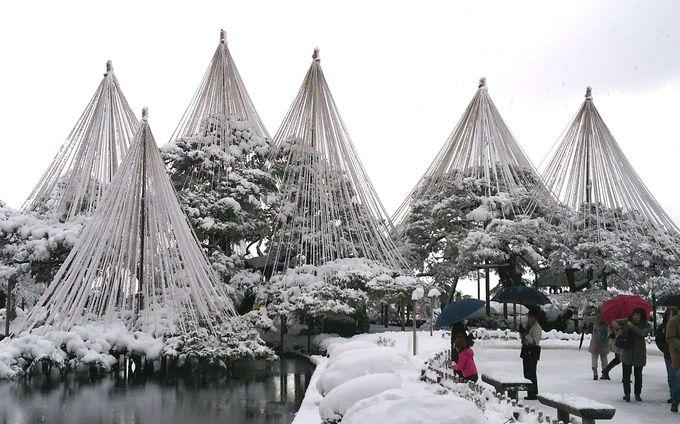 金沢と近郊 冬のおすすめ雪景色スポット5選