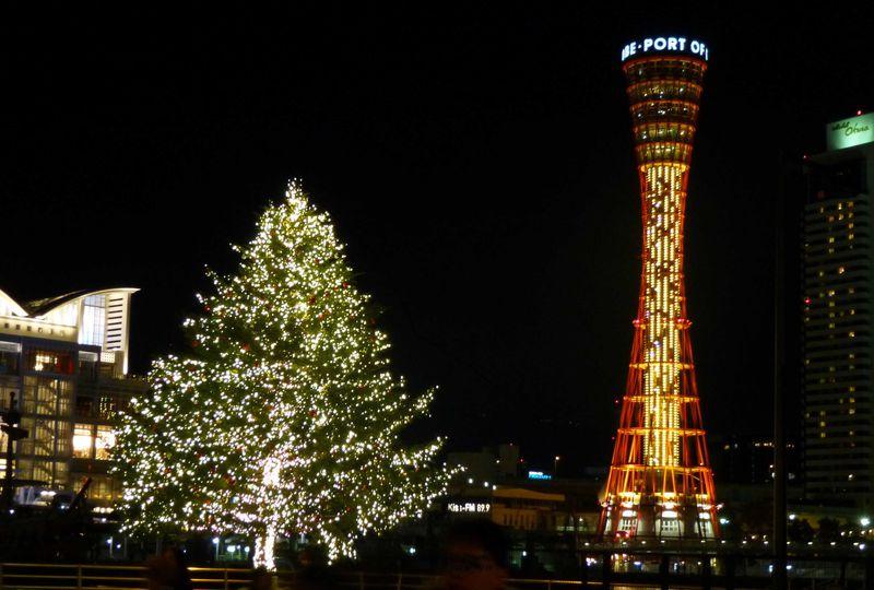 クリスマスデートにも!神戸ハーバーランド・ウィンターイルミネーション