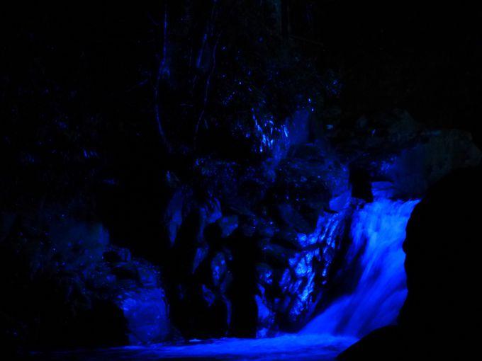 迫力ある滝のライトアップ