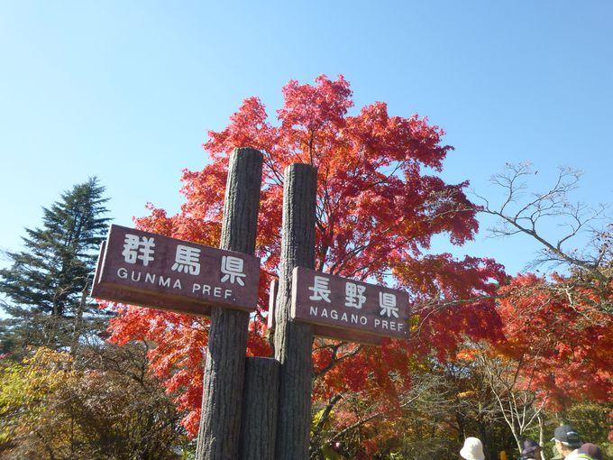 オススメの時期は、新緑・紅葉の頃。天候にも注意!