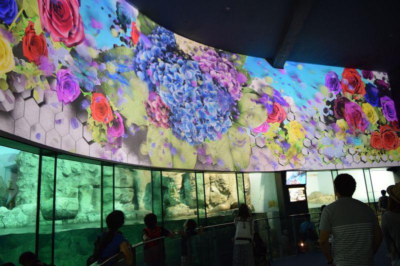 横浜・八景島シーパラダイス「楽園のアクアリウム」開催!花と光の水族館に酔いしれる