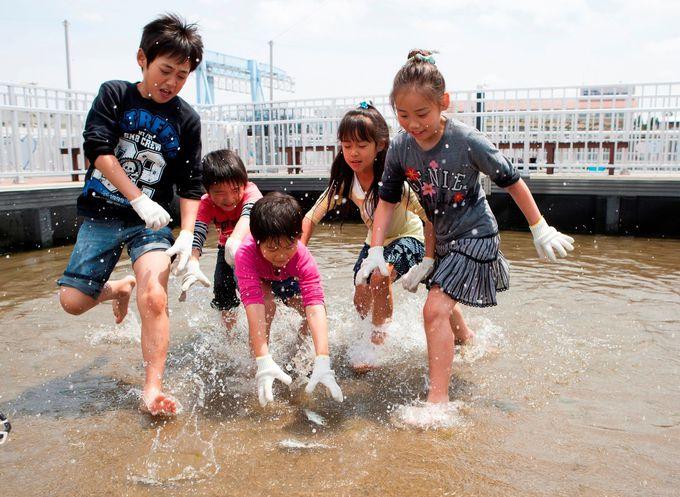 子供と一緒に出かけたい!魚や動物、昆虫と触れ合える横浜観光スポット3選