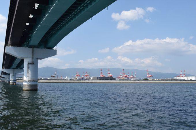 神戸空港に近い航路を取るファンタジー号