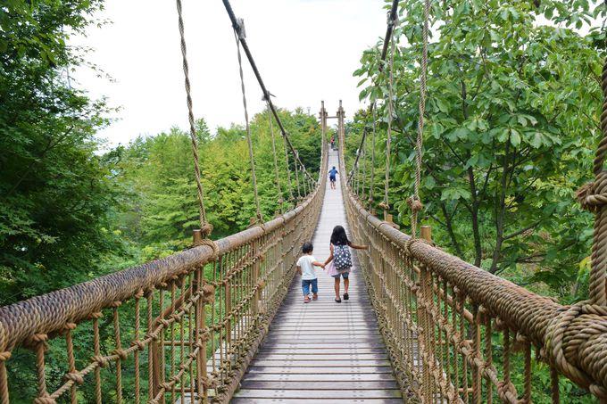 大きな吊り橋「わんぱく大橋」を渡ろう