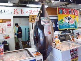 三崎まぐろも観光船も!三浦の特産物が並ぶ「うらりマルシェ」の楽しみ方|神奈川県|トラベルjp<たびねす>