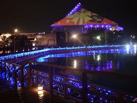 冬の夜は横浜・八景島シーパラダイス!イルミネーション「楽園のナイトアクアリウム」|神奈川県|トラベルjp<たびねす>
