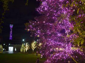 駅直結&マリンタワーも!横浜・アメリカ山公園イルミネーション「Sweet Memory」|神奈川県|トラベルjp<たびねす>