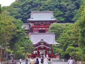 鎌倉の象徴「鶴岡八幡宮」基本の見どころ、参拝方法は?