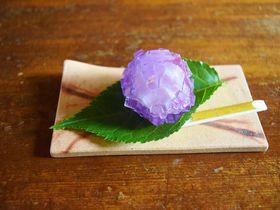 北鎌倉「御菓子司こまき」で美しい四季と甘味を味わう