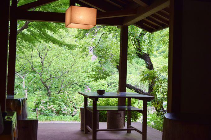 園内の茶店で朝食を!特別メニューもチェック