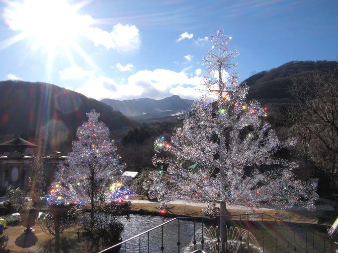 恋人を意味する「ラ・コッピア」青空に輝くクリスタルガラスのツリー