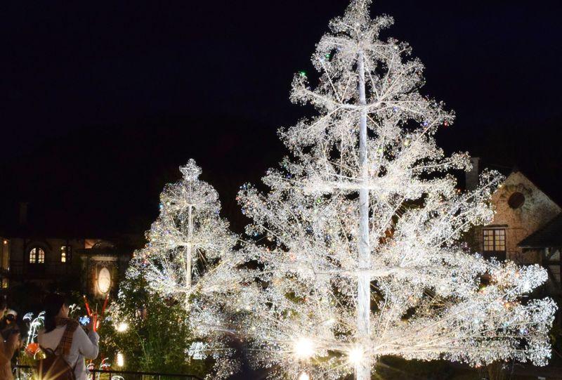 心ふるえる冬景色。「箱根ガラスの森美術館」クリスタルガラスのツリー「ラ・コッピア」
