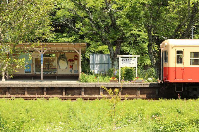 房総半島のど真ん中を横断する人気のローカル線「小湊鐡道」と「いすみ鉄道」