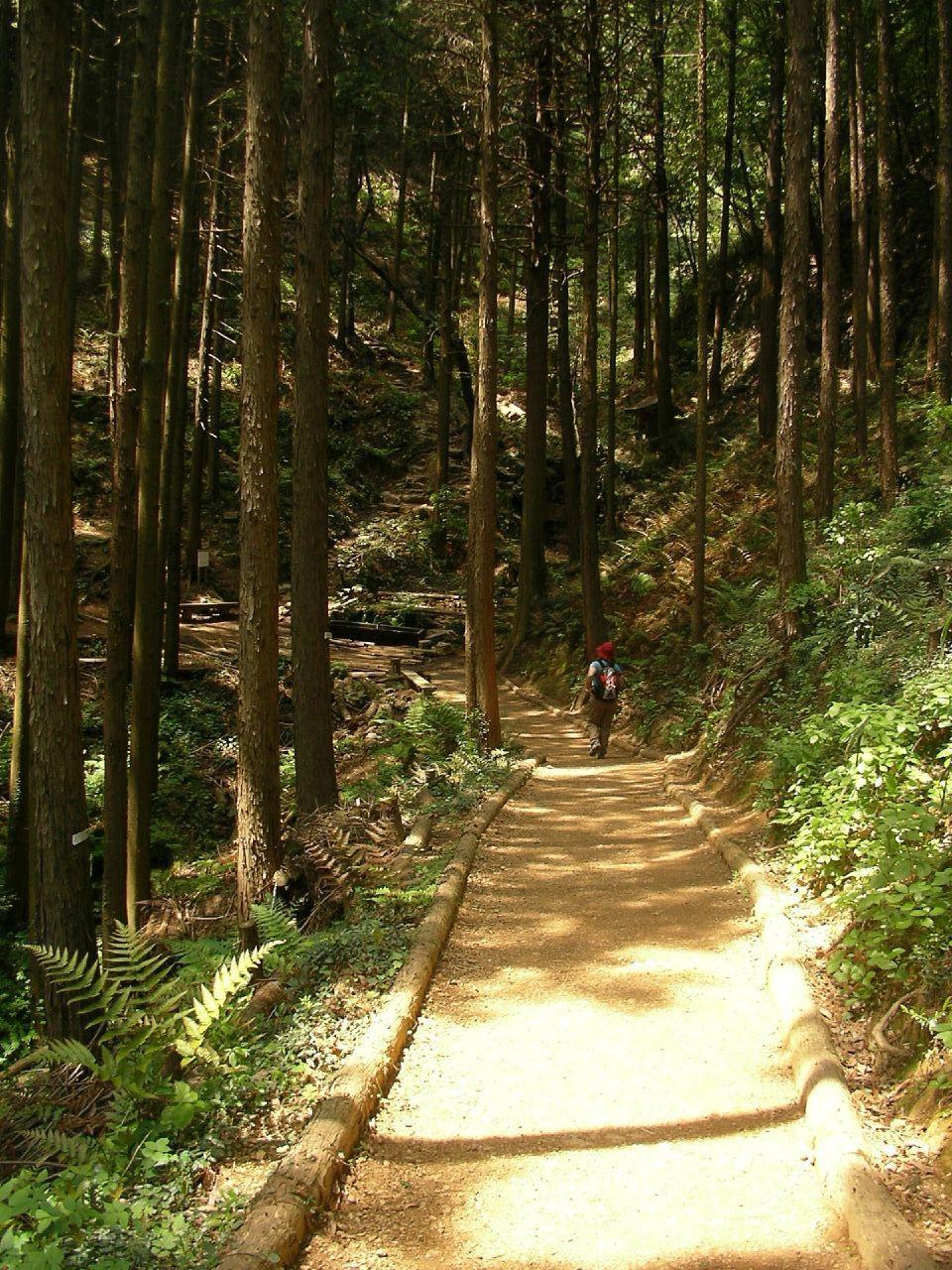 手軽な登山は日和田山で♪
