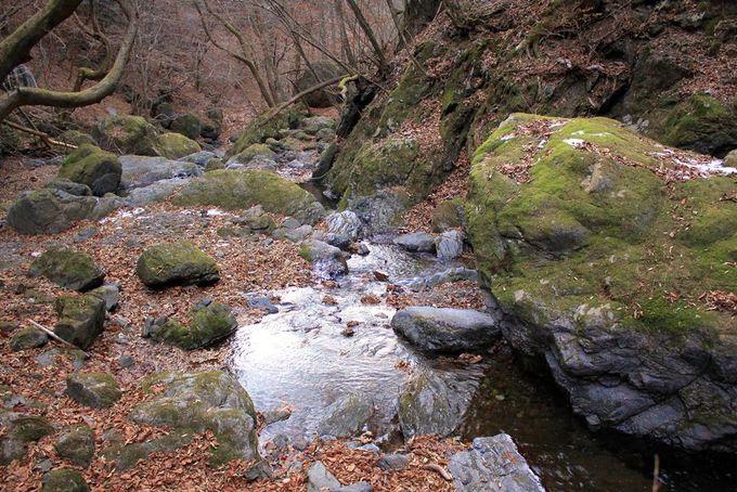オーソドックスに両神山を攻略!日向大谷コース・清滝避難小屋経由