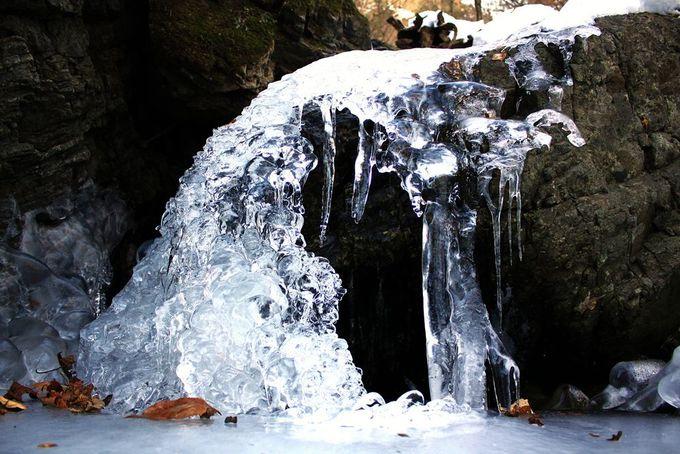 谷川に癒され、滝に魅了される!それが日向大谷コース