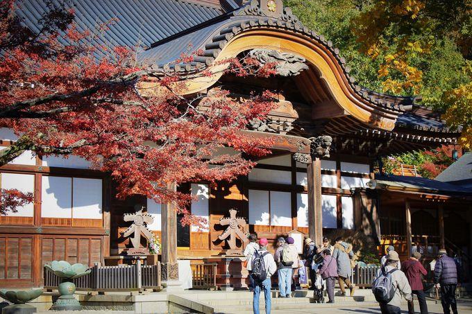 """東京二番目の古刹「深大寺」で紅葉見物と名物""""そば""""を"""