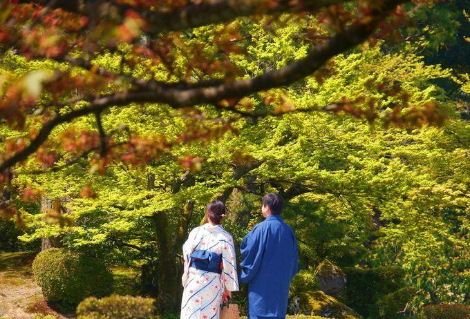 着物人たちの美しい景観〜金沢城・兼六園