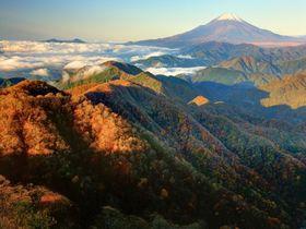関東縦走の青嶺!丹沢主稜縦走ルートは美しい絶景パノラマ|神奈川県|トラベルjp<たびねす>