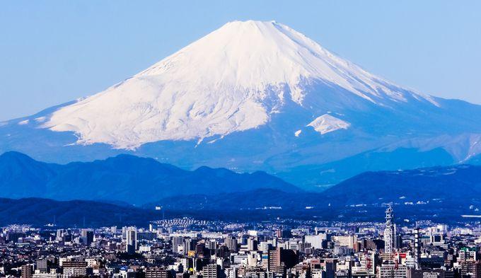 半僧坊、勝上献展望台の富士山パノラマフォト