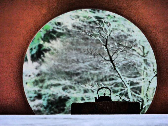 明月院の禅フォト