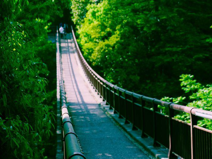 東京のヒーリングスポット《秋川渓谷》あきる野市/檜原村